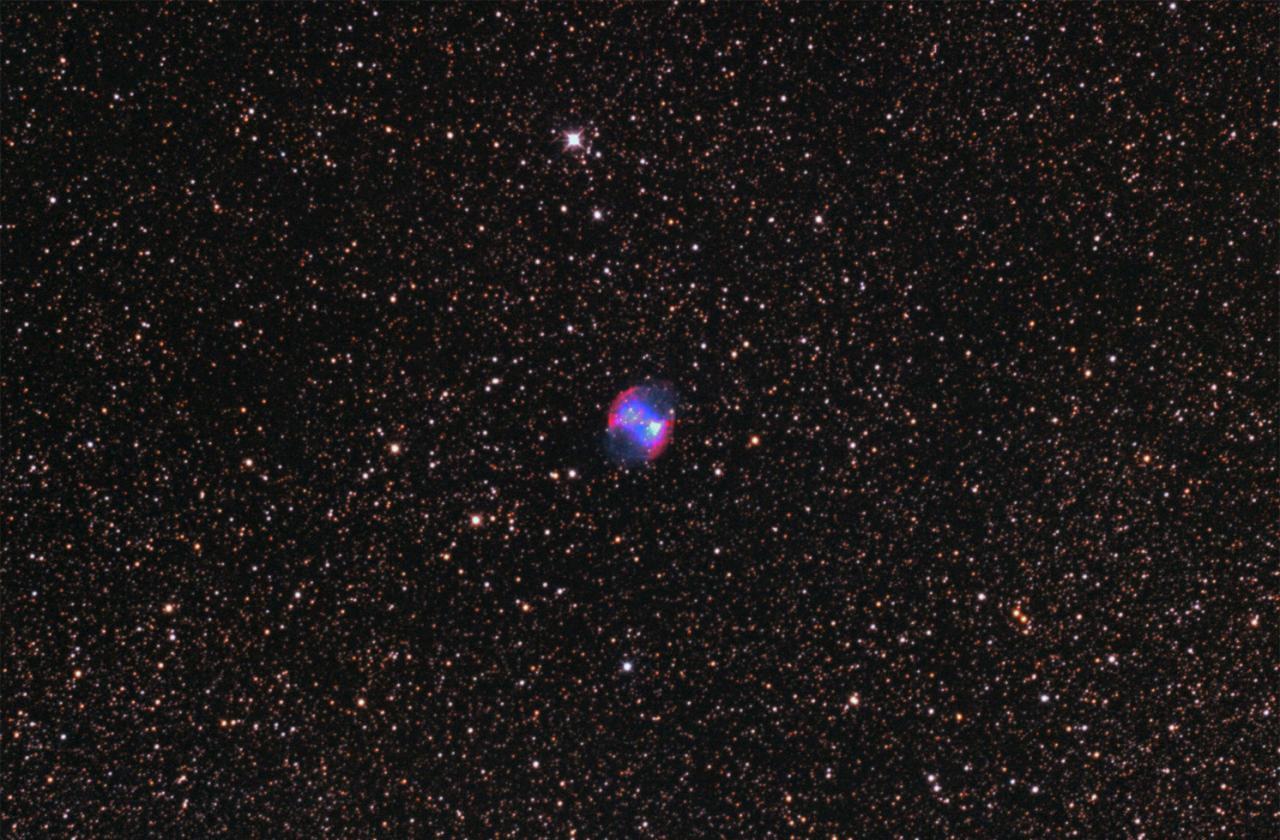 M27_Nébuleuse planétaire de l'Haltère_Petit Renard_600mm